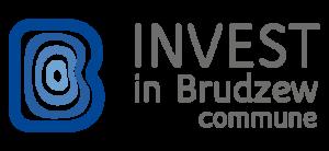 Brudzew Commune